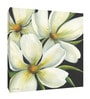 Canvas 8 x 8 Inch Floral Framed Wall Art by Elegant Arts and Frames