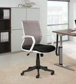 Trisha Ergonomic Chair in White & Beige Colour