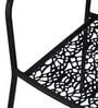Erinda Metallic Garden & Outdoor Chair in Black Colour by Nilkamal
