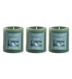 Eucalyptus Mint 3 Inches Pillar Candles