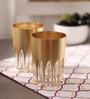 Eva Golden Acrylic 210 ML Tumbler - Set of 6