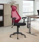 Venus Executive Chair in Maroon Colour