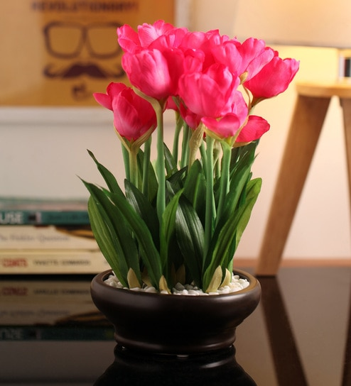 Pepperfry & Pink Tulip in Ceramic Vase by Fourwalls