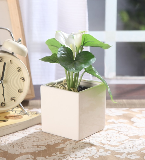 White Ceramic Square Vase By Fourwalls
