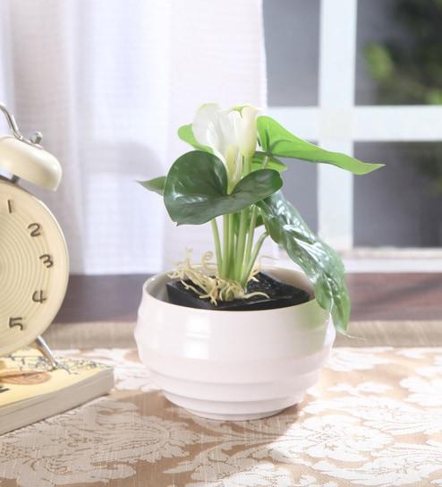 Buy White Plastic Tall Vase By Fourwalls Online Resin Vases