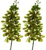 Green Polyethylene Artificial Mokara Orchids by Fourwalls