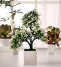 Fourwalls Green & White Polyester Iniature Artificial Tree In Ceramic Vase