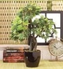 Fourwalls Green Polyester Artificial Japanese Maple Plant