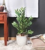 Green Synthetic Tall Mini Queues Plant by Fourwalls