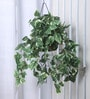 Fourwalls Green Synthetic Tall Pothos Hanging Basket Decorative Artificial Plant