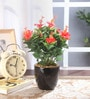Multicolour Polyester Premium Range Hibiscus Flowers with Vase by Fourwalls