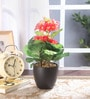 Multicolour Polyester Premium Range Primula Flowers with Vase by Fourwalls
