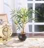 Fourwalls Multicolour Synthetic Tall Decorative Artificial Bamboo Plant with Pot