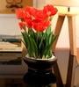 Orange Tulip in Ceramic Vase by Fourwalls