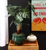 Green Polyester Philodendron In Ceramic Vase by Fourwalls