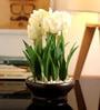 White Tulip in Ceramic Vase by Fourwalls