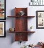 Oak Mango Wood Wall Shelf by Furniselan