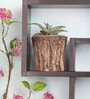Woodlike planter - Exquisite by Gaia