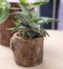 Woodlike planter - Minimalistic by Gaia