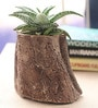 Woodlike planter - Slanted Small by Gaia