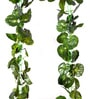 Green PVC & Synthetic Artificial Begonia Chain Creeper - Set of 2 by Ginni Bloom