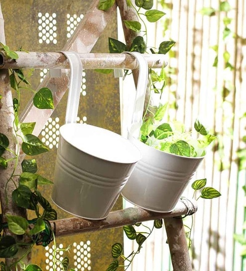 Buy White Metal Round Wall Planter Set Of Two By Go Hooked Online