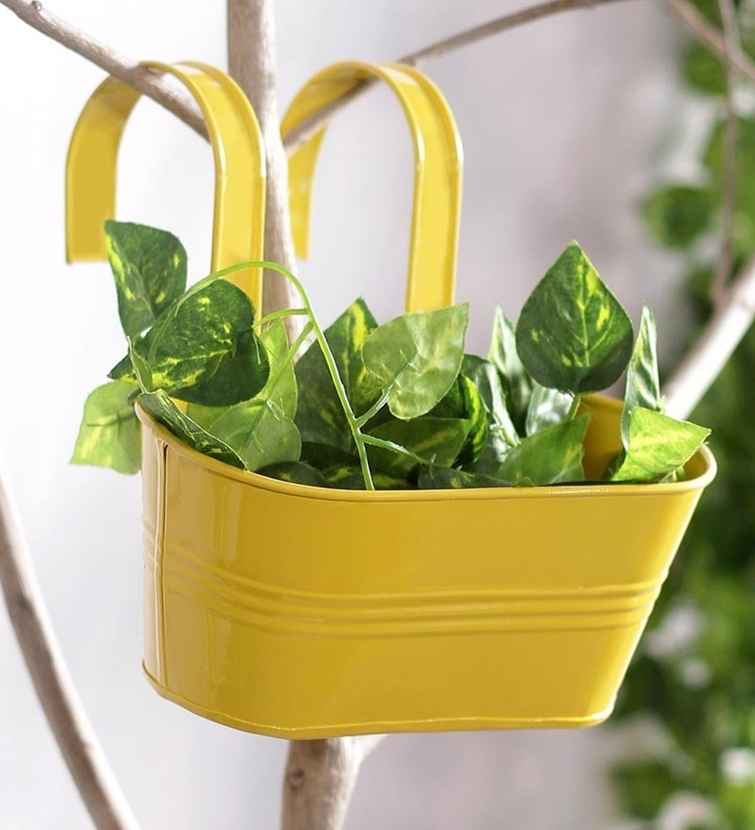 Picture of: Buy Yellow Metal Oval Metal Railing Planter By Green Girgit Online Railing Planters Pots Planters Home Decor Pepperfry Product