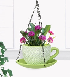 Green  And White Terracotta Cup Saucer Hanging Planter