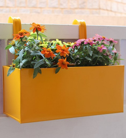 Buy Large Yellow Metal Railing Square Box Planter By Green