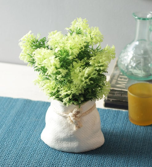 Pepperfry & Green Soft Touch Artificial Topiary Plant in a Ceramic Vase by Fourwalls