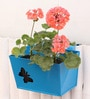 Blue Metal Small Railing Rectangular Box Planter by Green Gardenia