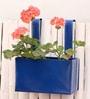 Green Gardenia Blue Metal Railing Small Square Planter