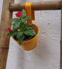 Green Gardenia Bucket Pot Holder with 6 inch Handle- Yellow