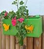 Green Gardenia Green Railing Square Box Planter