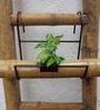 Green Gardenia Iron bamboo Holder with Bamboo Pot