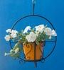 Green Gardenia Metallic Hanging Basket with Yellow Pot