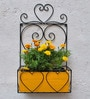 Black Iron Wall Planter with Yellow Wood Box by Green Gardenia