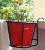 Iron Railing Basket with Red Metal Pot by Green Gardenia