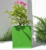 Green Gardenia Green Rectangular Pot