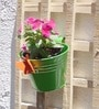 Railing Bucket With Butterfly by Green Gardenia