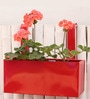 Red Metal Railing Large Square Planter by Green Gardenia