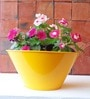 Gardenia Table Top Round Planter In Yellow