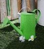 Green Girgit Design Embossed Watercane in Green Colour
