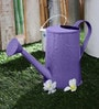 Green Girgit Design Embossed Watercane in Purple Colour