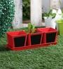 Green Girgit Herb Set Chalk Board Red Metal Planter