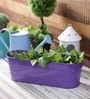 Green Girgit Purple Oval Planter