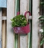 Green Girgit Pink Metal Oval Railing Planter