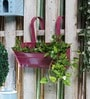 Green Girgit Pink Metal Oval Railing Planter