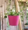 Pink Hanging Bucket by Green Girgit