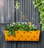 Polka Dot Rectangle Planter in Yellow Colour by Green Girgit